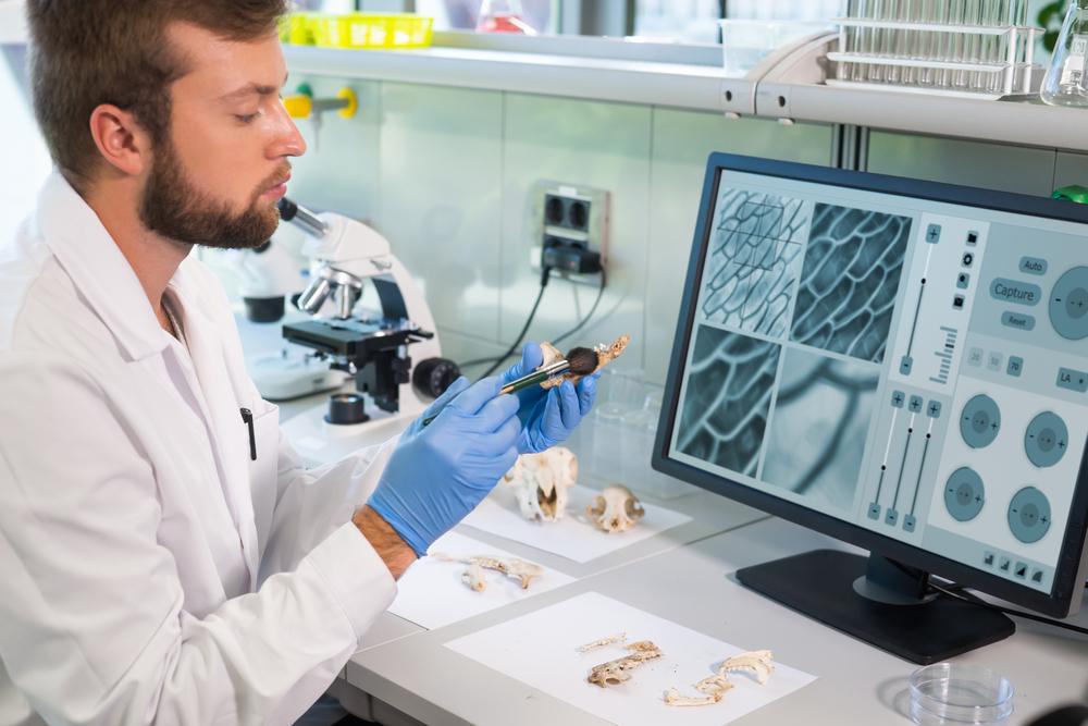 AI and Computational Biology